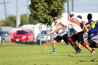 Friday - Men's Placement - 2015 USAU National Championships
