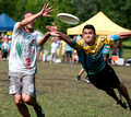 Playoffs (17th - 32nd) - Mixed Division - WUCC 2014